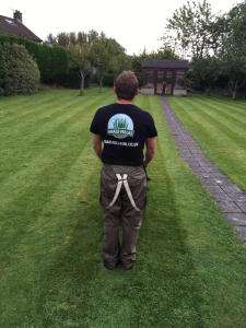 Grass Cutting Bangor County Down