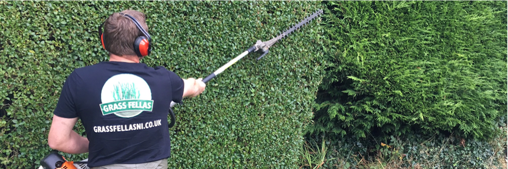 Hedge Trimming Bangor